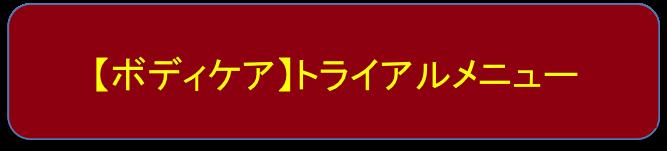 【ボディケア】トライアルメニュー