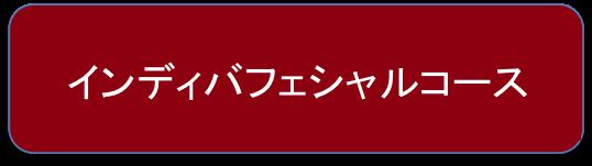 【オプション】インディバフェシャルコース
